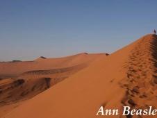 Ann Beasley - credit