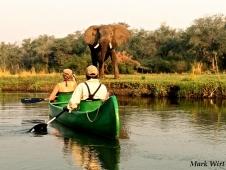 Canoe & Ele