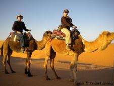 leissner_camels-copy
