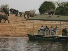 botswana boat cruise