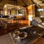 luxury safari-mombo camp