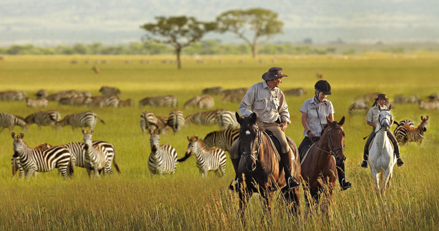 Hop on a Horse and Race a Giraffe Across Africa | Explore ...