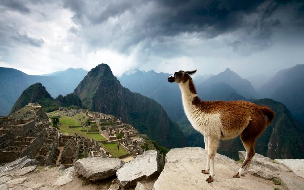 Why Do Peru Peru Has It All Explore Africa
